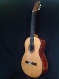 Guitarra de Cocobolo de Ayman Bitar